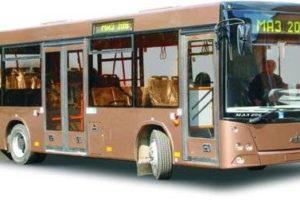 Пассажирская техника МАЗ 206, MA3 226