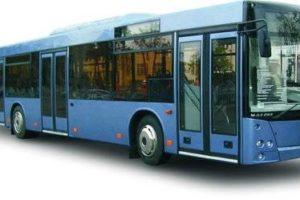 Пассажирская техника MA3 203, MA3 2031