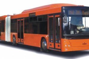 Пассажирская техника МАЗ-205069 городской (Евро-5)