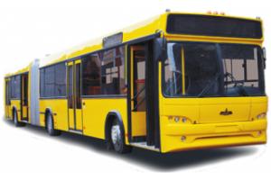 Пассажирская техника МАЗ-215069 городской (Евро-5)